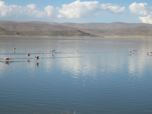 Poopó Lake