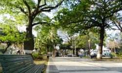 Plaza Blacutt – Santa Cruz